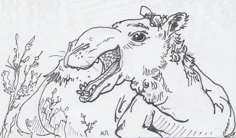 02-25-15-Camel-Mouth.png
