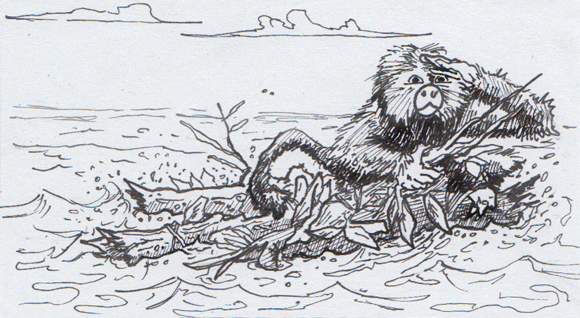Perupithecus ucayaliensis riding a natural raft to South America