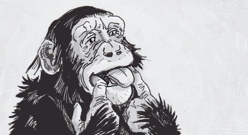 Drawing of a joking chimpanzee