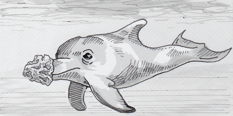 Drawing of bottlenose dolphin sponging