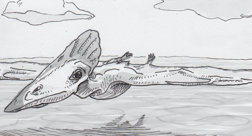 The ptrouble with pteroids and pterosaur flight