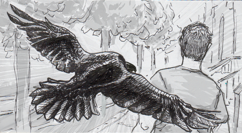 Drawing of a crow dive-bombing a pedestrian