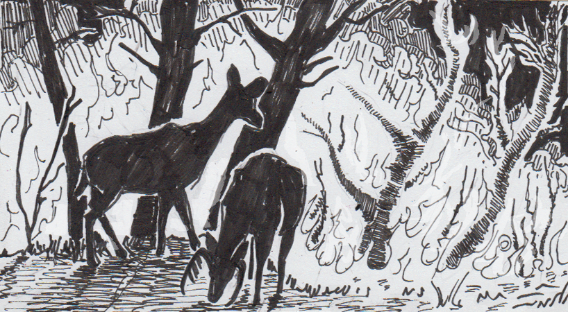 Drawing of deer near a forest fire