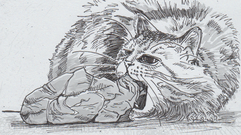 Drawing of a cat eating meat