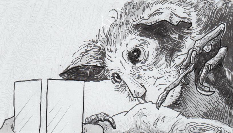 Drawing of an aye-aye taking a vision test
