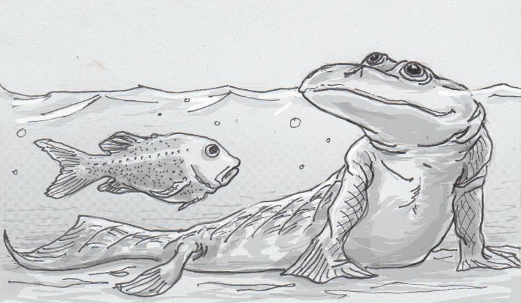 Drawing of a fish and Tiktaalik roseae