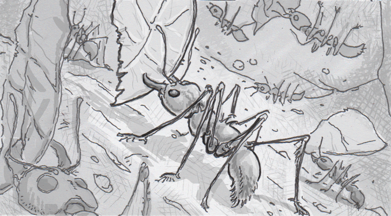 Drawing of leaf cutter ants collecting leaves