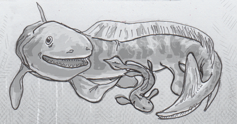 Drawing of Orthacanthus