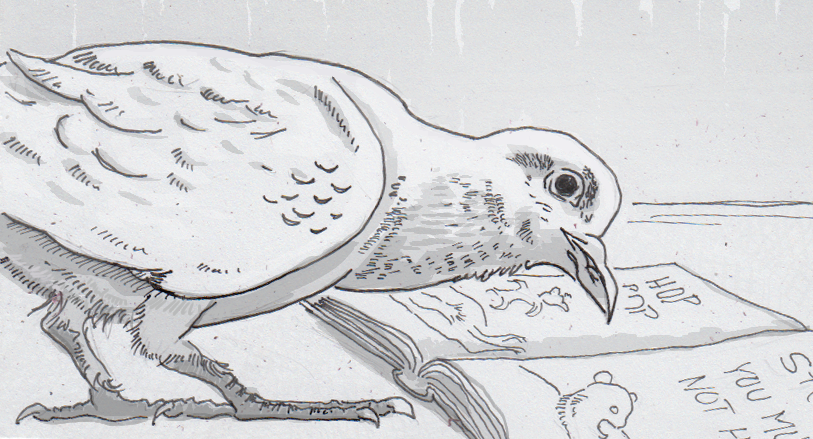 Drawing of a pigeon reading 'Hop on Pop'