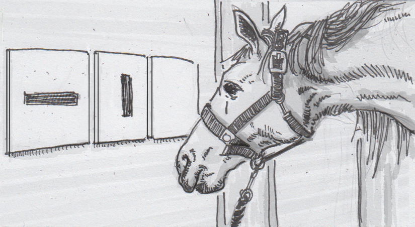 Horses Trained To Point To Symbols To Share Their Preferences A
