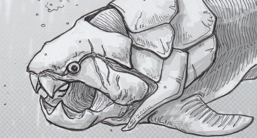 Drawing of Dunkleosteus