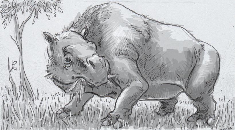 Drawing of Toxodon