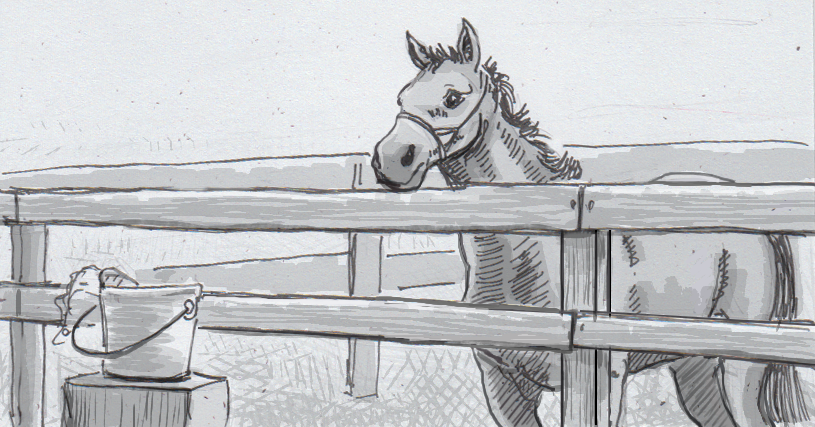 Drawing of a horse looking at a bucket of treats