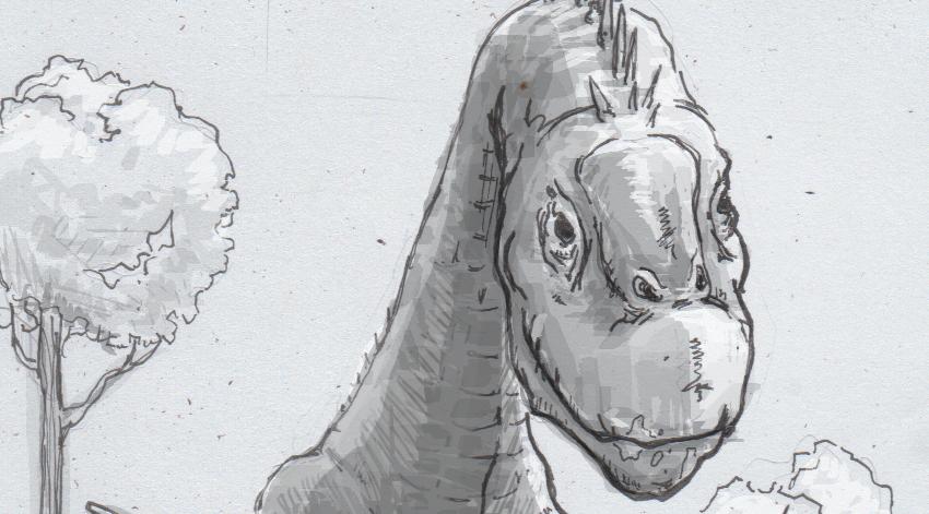 Drawing of a Camarasaurus head