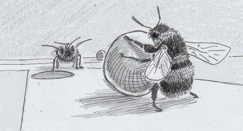 Drawing of a buff-tailed bumblebee pushing a ball