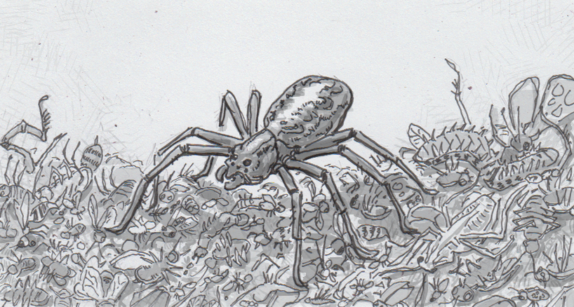 Drawing of a spider on a huge pile of dead bugs