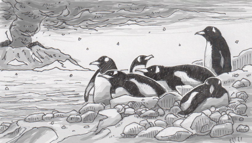 Ash and poop reveals the perseverance of penguins amid repeated volcanic eruptions