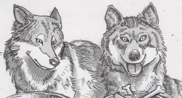 Drawing of two wolves with unequal rewards