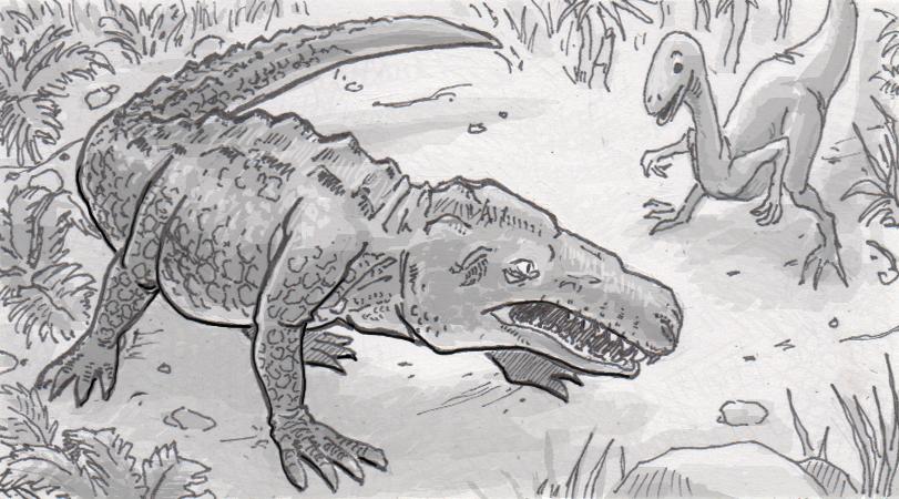 Colossal crocodilian was built to be the top predator of Jurassic Madagascar