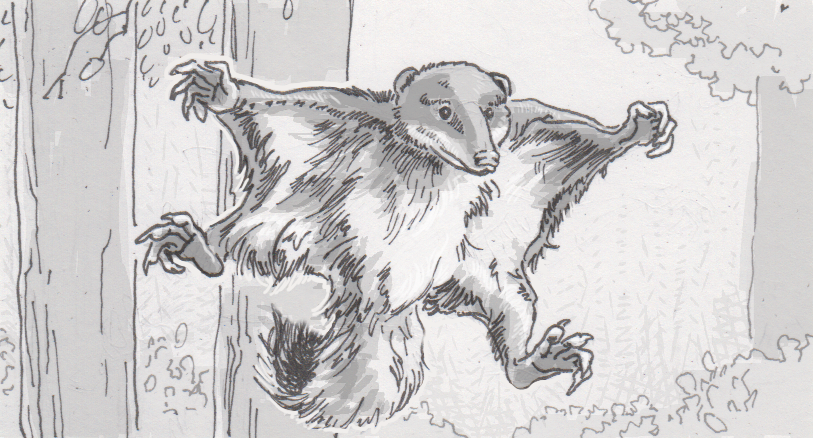 Fossils Reveal Evolutions Earliest Examples Of The Flying Squirrel