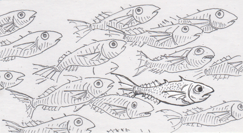 School of stickleback fish