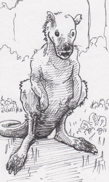 Balbaroo fangaroo