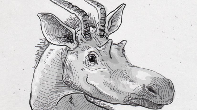 Decennatherium rex