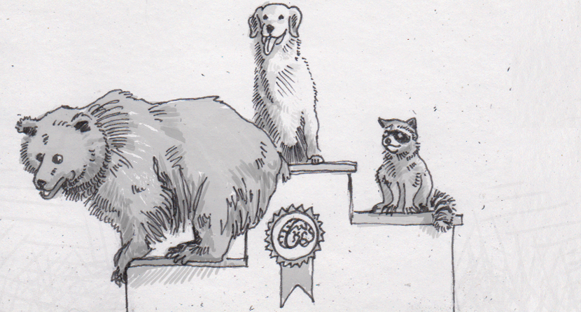 A brown bear, golden retriever, and raccoon ranked on an awards podium