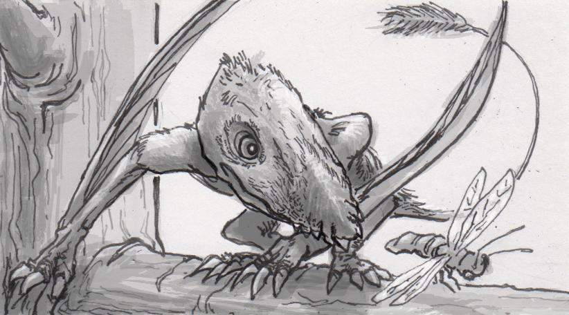 Dimorphodon macronyx hunting an insect