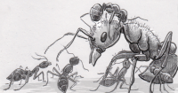 Argentine ants attacking a harvester ant