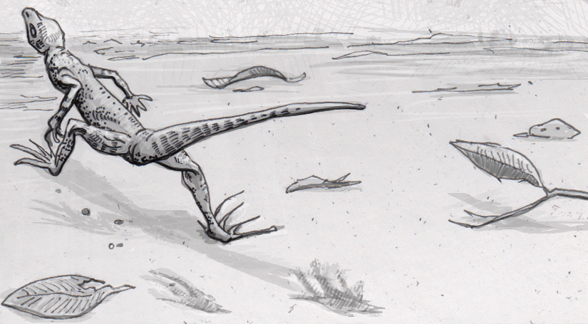 Fossil footprints suggest that lizards have long been able to run on only two legs
