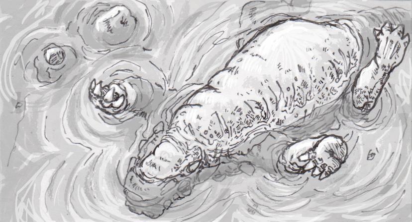 Dead Euoplocephalus floating in water