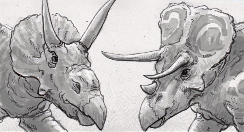 Horns and frills helped ceratopsians find mates more than they dissuaded contact with other species