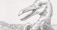 Ichthyornis dispar