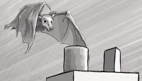 Egyptian fruit bat flying towards a cylinder and prism